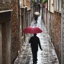 Alley Umbrellas