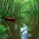 Bashakill Canoe