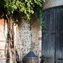 Vineyard Tool Shed