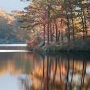 Pastel Reflection