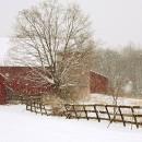 Millsburg Farm Snowfall