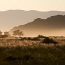 Sepia Hills