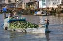 Melon Boat