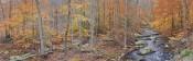 Autumn Glen Panorama