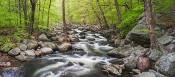 Spring Flow, Popolopen Creek Pan