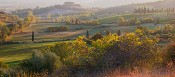 Tuscan Hills Light
