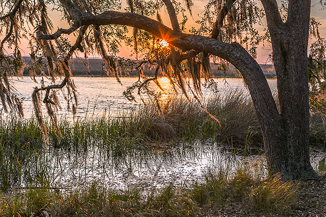 Savage Island Sunrise
