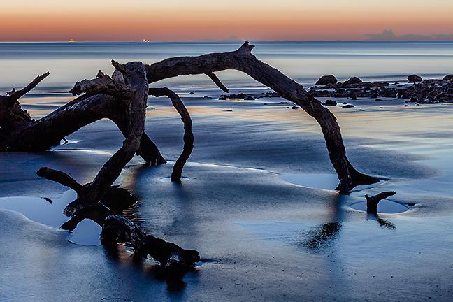 Driftwood Dawn