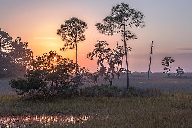 Salt Marsh Sunset