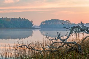 Tranquil Morning, Skidaway River