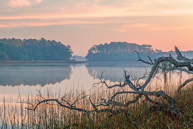 Tranquil Morning, Skidaway River