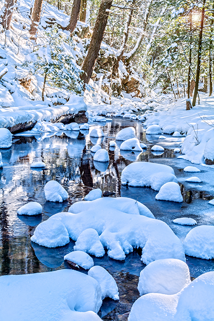 Creek Snow Sunlight