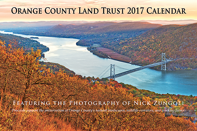 Purchase 2017 Calendar