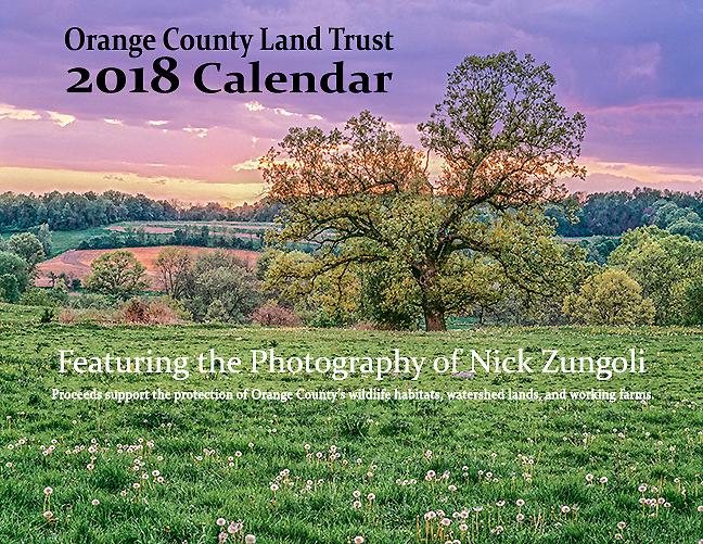Purchase 2018 Calendar