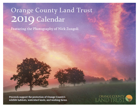 Purchase 2019 Calendar