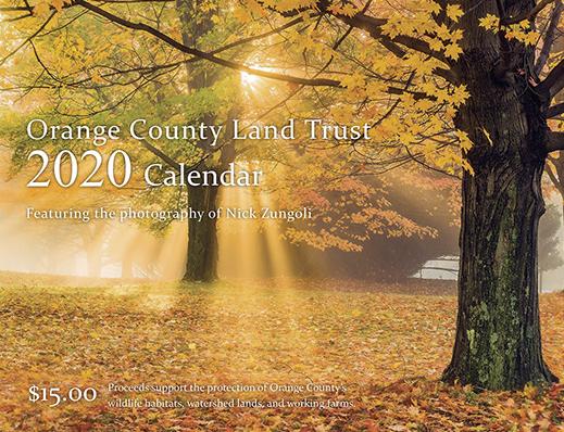 Purchase 2020 Calendar